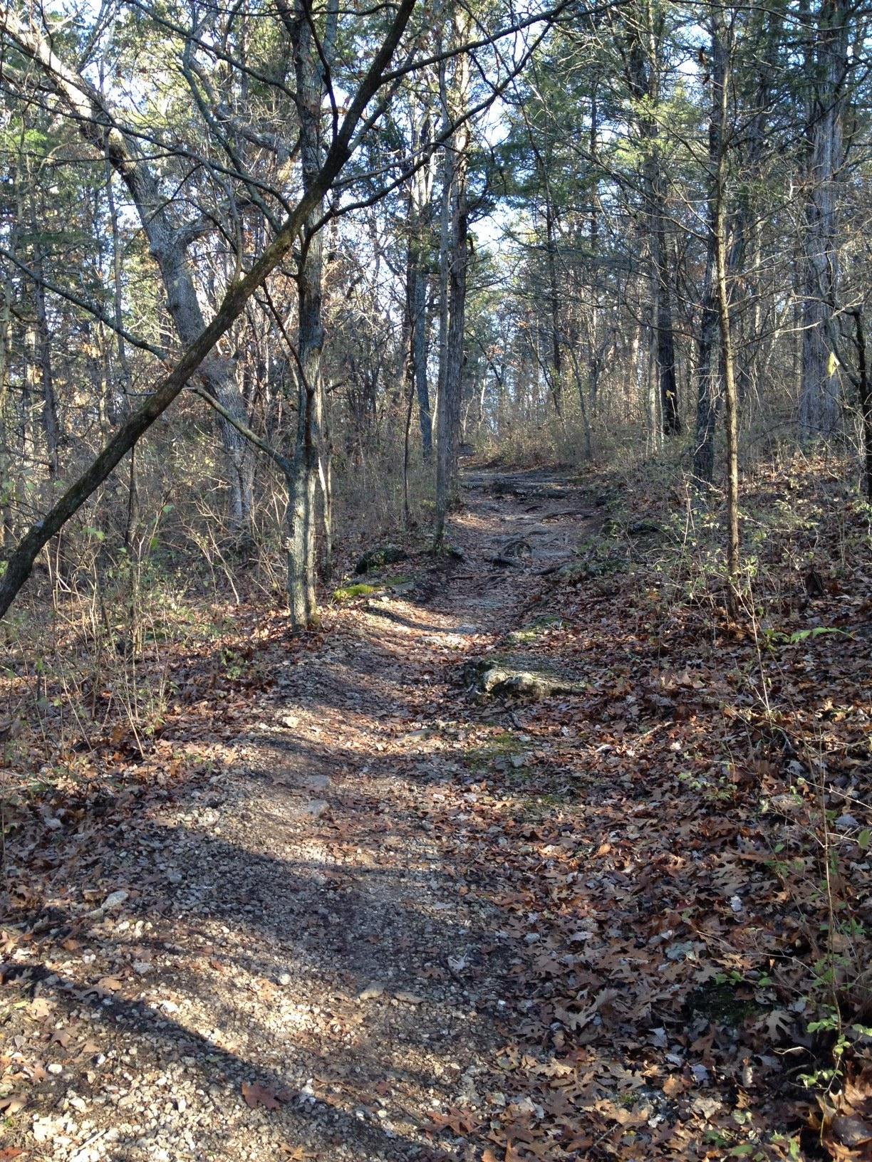 chubb-trail-west-tyson-climb